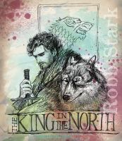 Robb Stark, King in the North by sketchditto