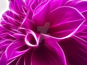 Purple Flower F1 by Kae-Infinity