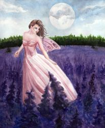 Lavender Fields by Melodieous