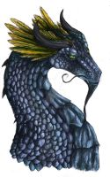 Melynius the Dragon by zuvelioke