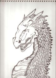 Dragon pencil art by arbiter632