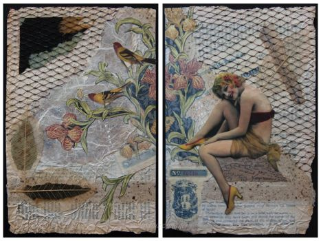 Tanagers_a diptych by hummbuzz