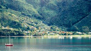 NZ- Picton Bay by EJSCreations
