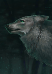 Wolf Daughter by Lutri