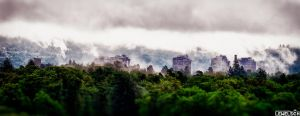 Morning Clouds And Fog by LeWelsch