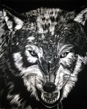 Wolf Scratchboard by KytCordell