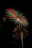 Fireworks 3 - The Daisy by robertllynch