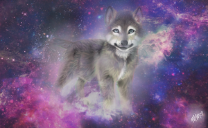 The Spirit Wolf Pup Of the Universe by morganmal2905