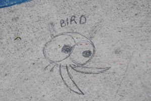 Bird  by ringette-and-riding