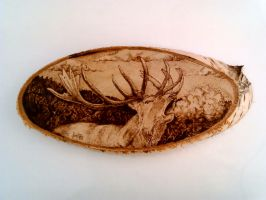 Deer (Cervus elaphus) woodburn by FizikArt