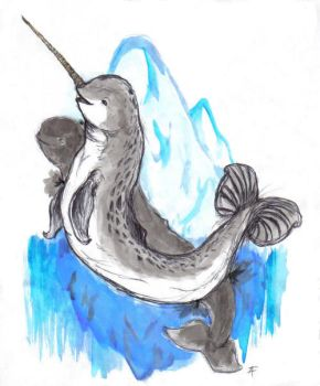 Narwhals by Stalinismo