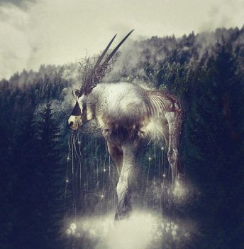 The Forest Spirit by ultradialectics