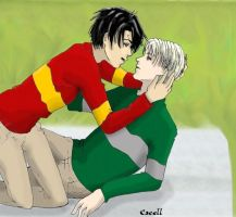 Harry and Draco at the garden by cacell