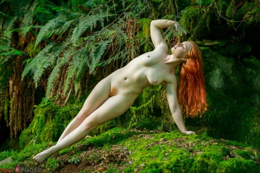 Fire and Moss by Mac--Photo