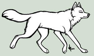 generic wolf template by stelliformed