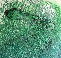 ANOTHER GREEN HARE FINISHED