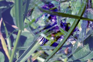 The world in a soap bubble. by oanaunciuleanu