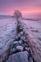 Winter Morning by TristanCampbell