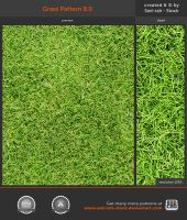 Grass Pattern 8.0 by Sed-rah-Stock