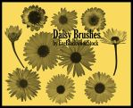 Daisy Brush Set by EveBlackwoodStock