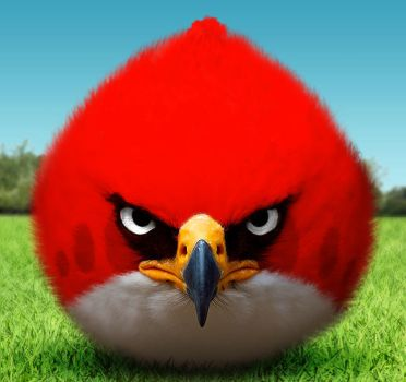 The angry bird by averto