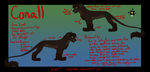 2013 Reference Sheet - Conall by IzzyShea
