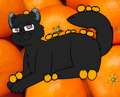 16 WHOLE CLEMENTINES!!!!!!!!! by Juuzou-Suzuyas