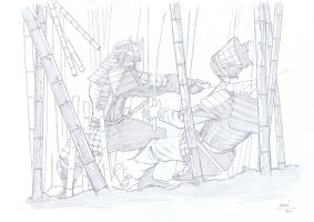 Commission Samurai in Action by aminamat