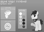 Arzon Reference Sheet by GrayTyphoon