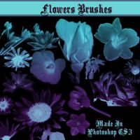 Flower Brushes by dollieflesh-stock