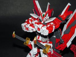 Astray Red Frame Kai by GeneralMechanics