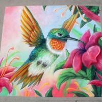 Humming Bird Chalk Art by charfade