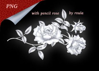 With Pencil Rose by roula33