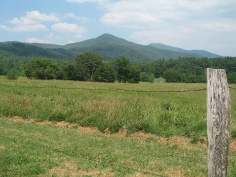 Cade's Cove 1 by AnimalSam