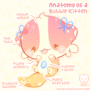 Bubble Kitten Anatomy by Sarilain