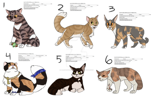 Warrior Cats Generator Adopts [CLOSED] by DrowsyInsomnia