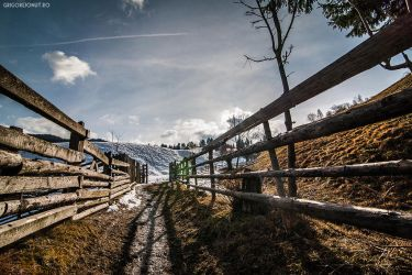 Mountain life by MWPHOTO