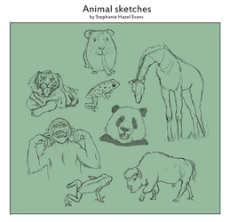 Animal sketchwork by shevans