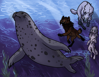 Seal  Stalking by Eaglidots