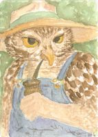 Saw What? ACEO by metasilk
