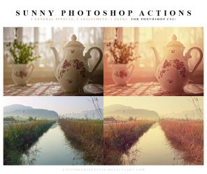 Photoshop Actions Sunny by meganjoy