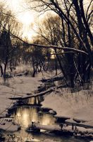Winter river by Anna-Belash
