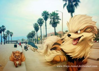 Run!!! WIld Fire Pokemon in LA RUN!!!! by Ninja-Jamal