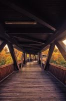 wooden bridge by rayxearl