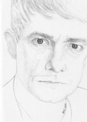 2015 Martin Freeman 2 by Splunge4Me2Art