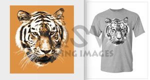 Tyger Design W. Logo by Edgeley
