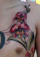 Red orchid by Ogra-the-Gob