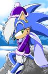 Frost the Hedgehog by SonicMaster23