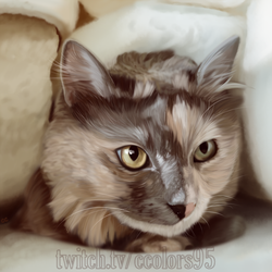Commission - Cat Painting by ccolors95