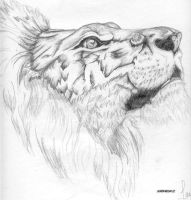 Lion by I-ate-all-my-crayons